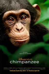 04-12-chimp