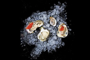 09-12-oysters