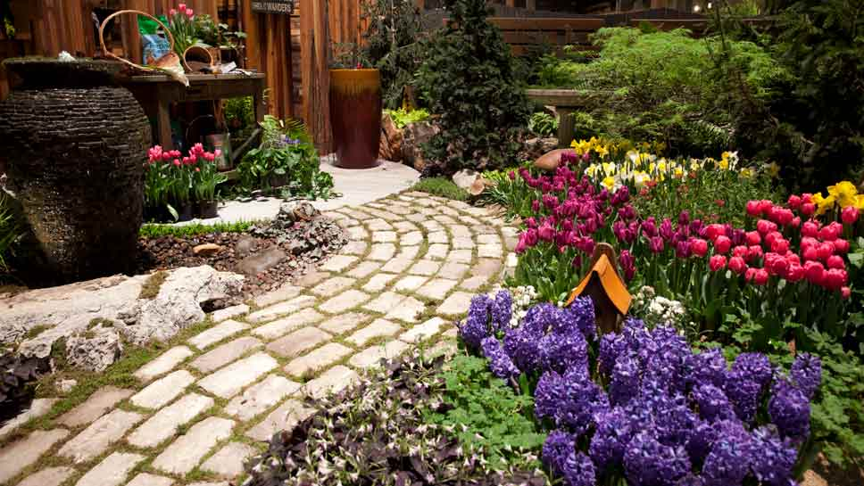 Image result for chicago flower show