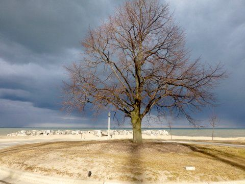 Forest Park Beach is one of Lake Forest's well known attributes,