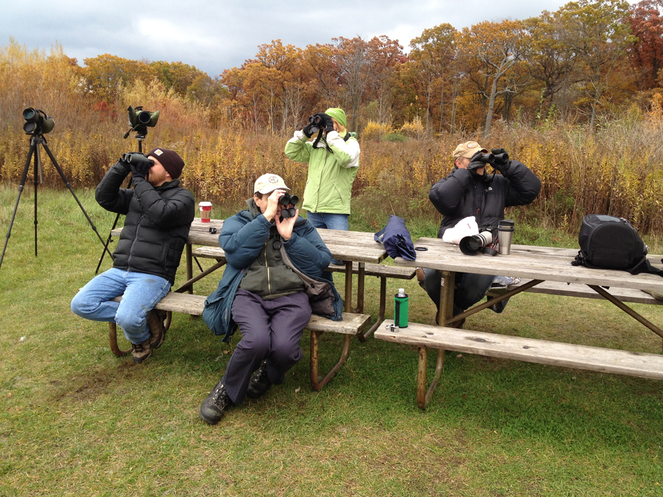 Watching for hawks and other raptors at the Fort Sheridan Preserve. Photo by Vic Berardi.