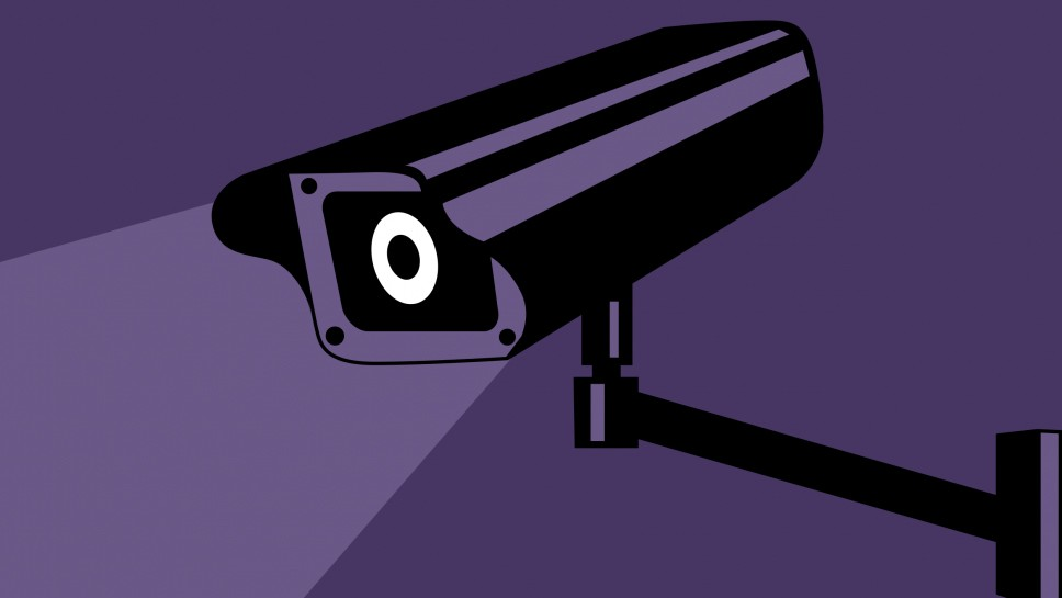 Surveillance Camera Catches Burglary-in-Progress