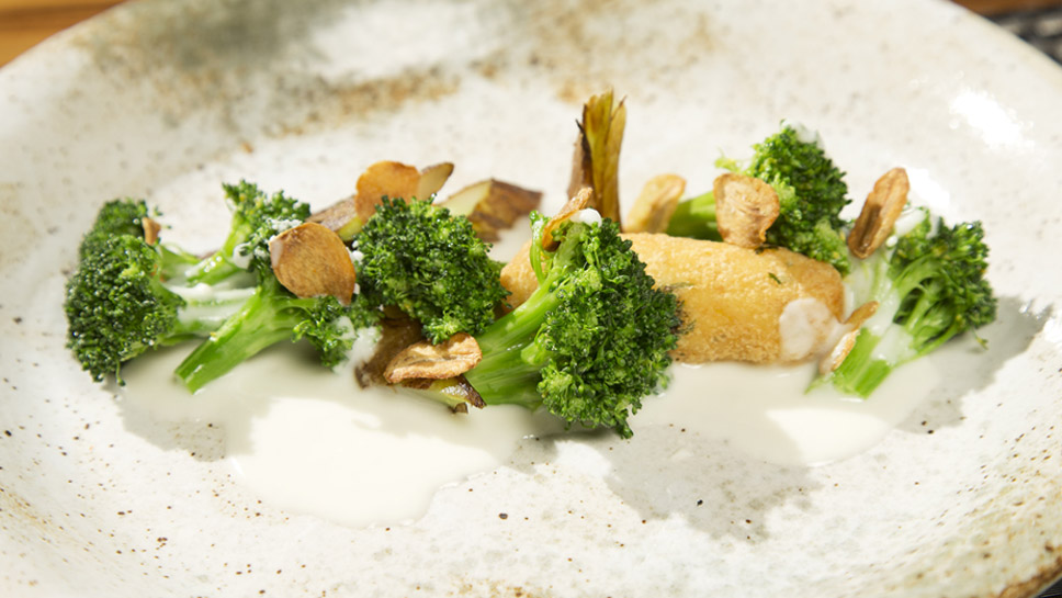Broccoli Two Ways, Croquettes, and Cheese Sauce would appeal even to former President George H.W. Bush, whose dislike of broccoli is well-known.