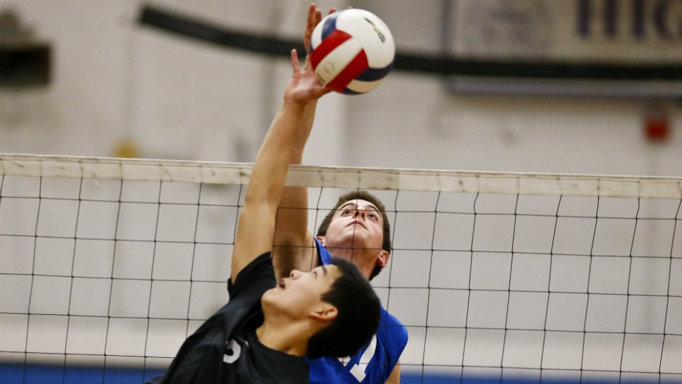 HP's Hoffman thinking outside the block