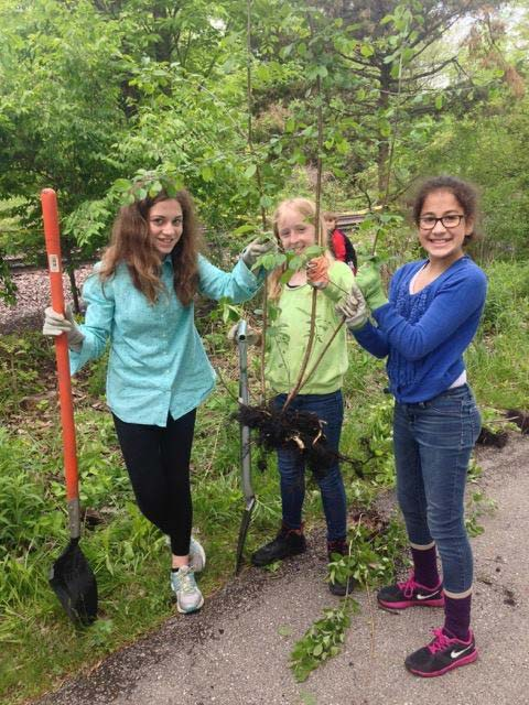 Helping hands on the Greenbay Trail