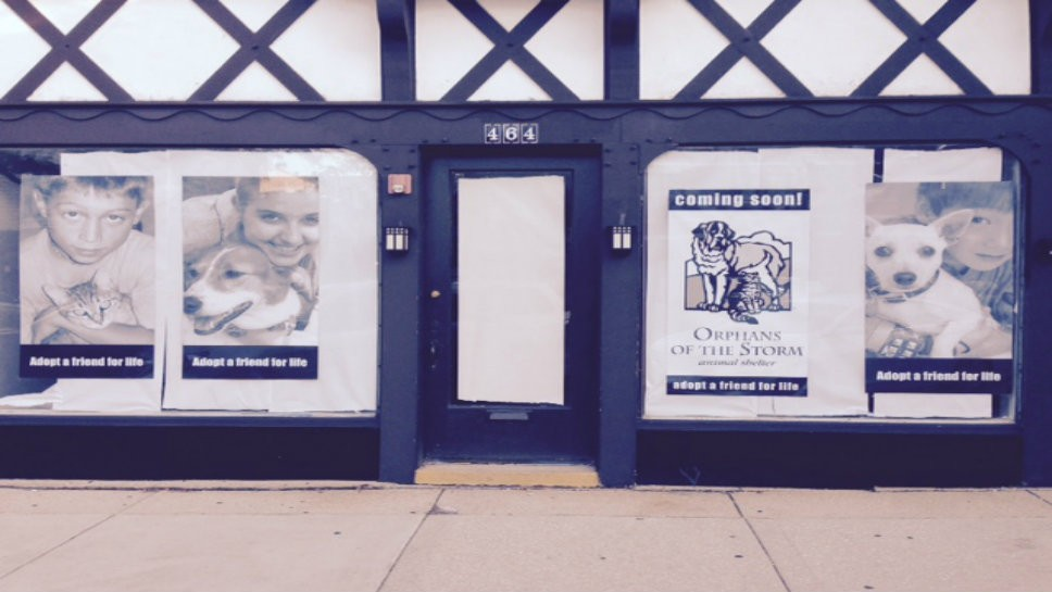 Orphans Of The Storm To Open in Highland Park