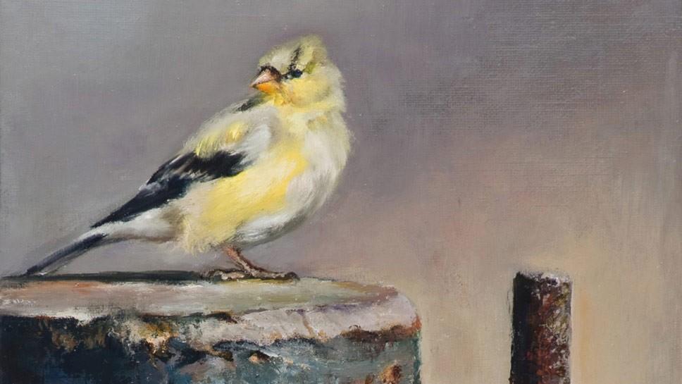 Artist Selected to 'Birds' Exhibit