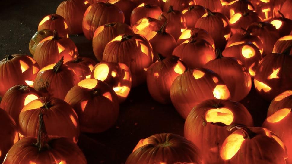 Save the Date: Pumpkin Fest