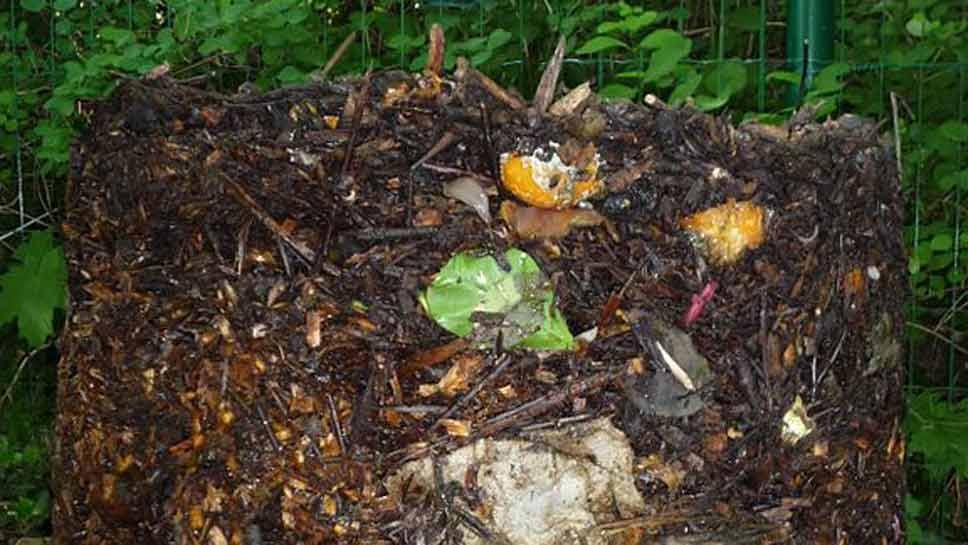 Recycling Compost Curbside