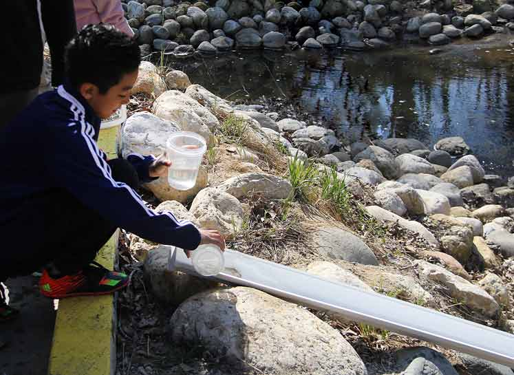 A 5th grader from Oak Terrace School releases young rainbow trout into a ravine at Rosewood Park Beach; photo courtesy of the Park District of Highland Park