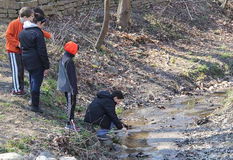 Fifth grade students from Oak Terrace School in Highland Park release young rainbow trout into a ravine at Rosewood Park Beach; photo courtesy of the Park District of Highland Park