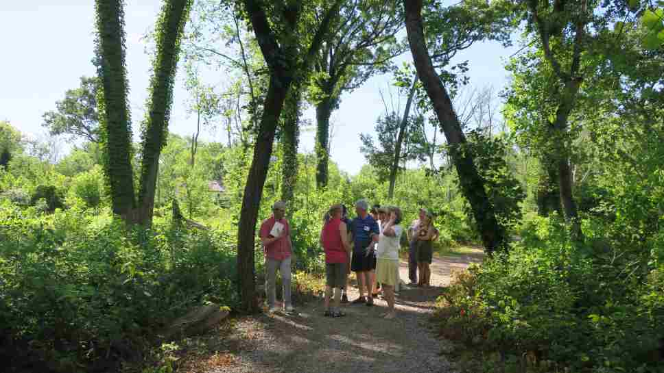 Residents on a nature tour in Crow Island Woods.