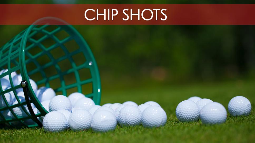 ChipShots
