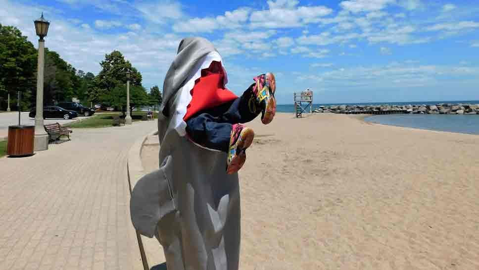'Shark' Sightings in Lake Forest