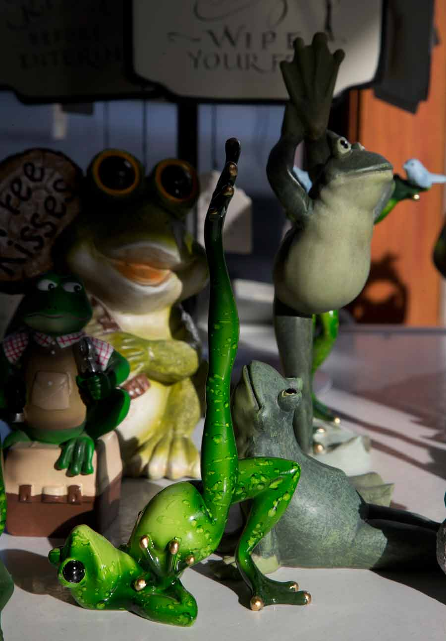 Gourmet Frog Bakery has an impressive collection of ceramic frogs. PHOTOGRAPHY BY JOEL LERNER/JWC MEDIA