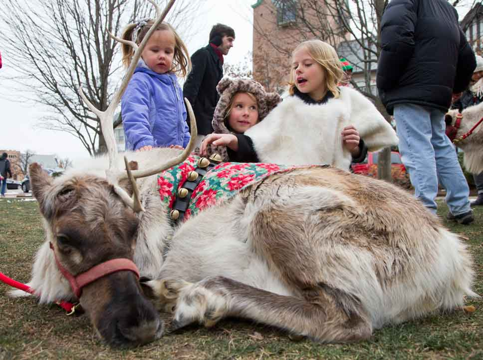Harper Mathis, 2 of Grand Rapids, Michigan, pets Santa's reindeer with her Lake Forest cousins, Annie Hanson, 6, and Lauren Hanson, 8.
