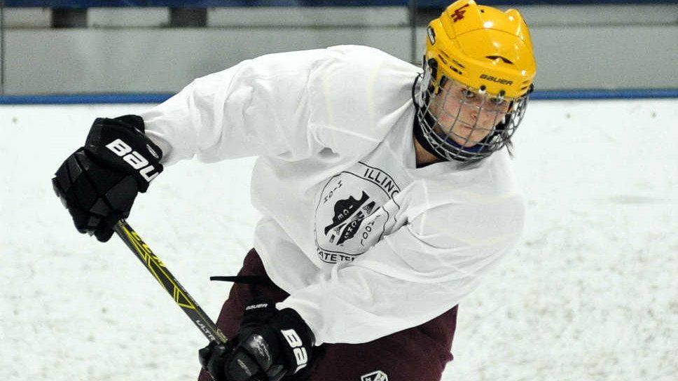 SportsFolio: AHAI all-state girls hockey game