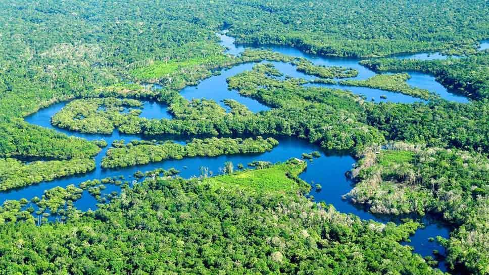 LFHS Insider: 'The Amazon'