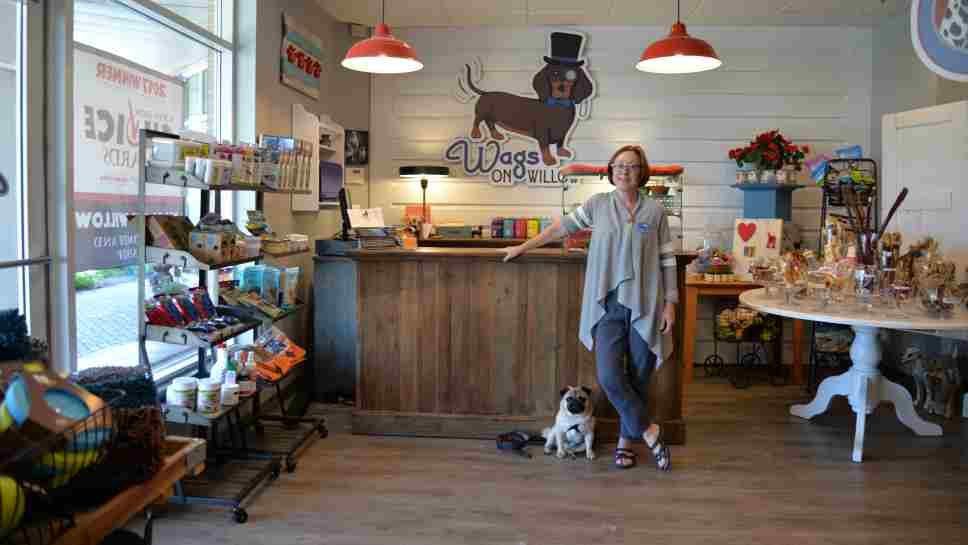Pets, Kids & Camp at Wags on Willow