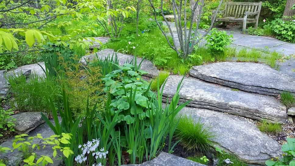 Stroll Features Simonds/Miller Gardens
