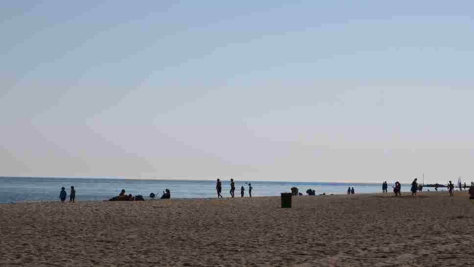 Kids Align for Wilmette Beach Cleanup