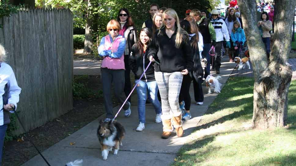 Save the Date: Hounds for Hadley
