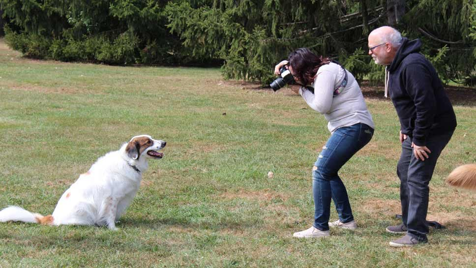 Pets in the Park: Photo Opp Supports Hurricane …