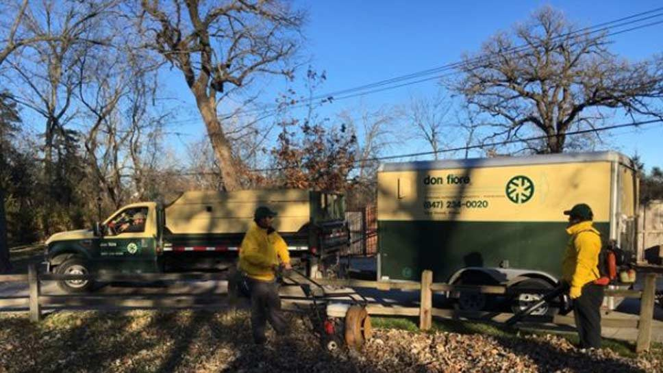 Uninsured Landscapers Worry Competitors