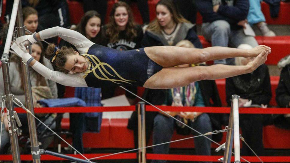 Titans are on target at state gymnastics meet