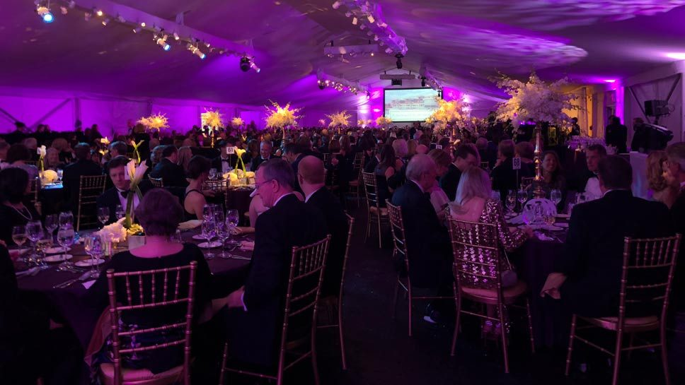 Hopping & Popping: Lake Forest Hospital Gala