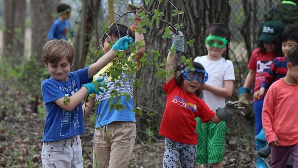 School Says Goodbye To Buckthorn