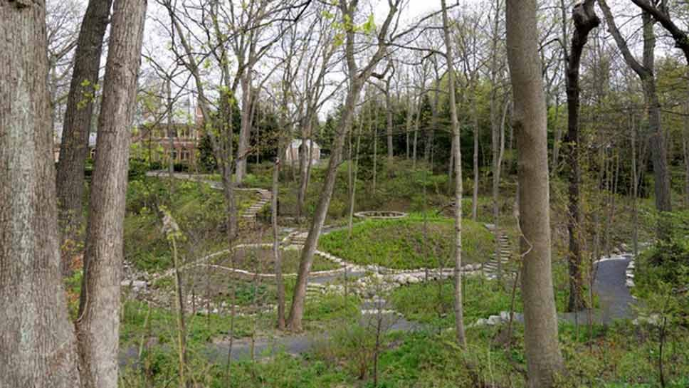Take A Tour of the Mayflower Ravine